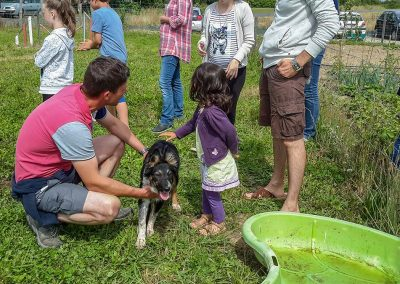 Atelier avec les chiens